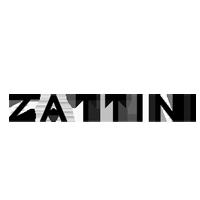 Logo_Zatinni
